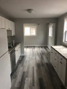 Newly Renovated Apt- Halifax - 2 BDR- Avail asap