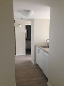 $1050 for a 1 bedroom plus den in a great location!