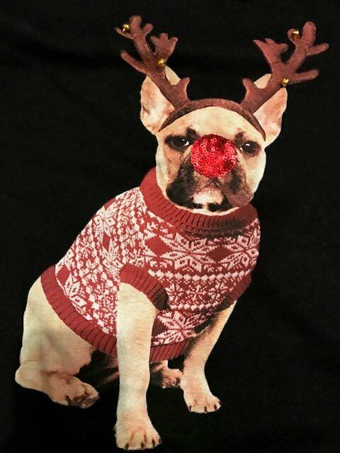 6bace89c4197 Pug Christmas Jumper with sequin nose and jingle bells on his antlers Size  12 Xmas Sweatshirt