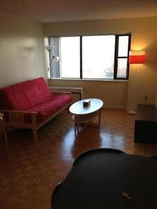 Large,Furnished Downtown Apartment in prime location-Move in now