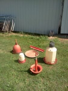 Used Chicken and Turkeys drinkers and feeders for sale