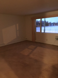 WEST HILL near SAFEWAY  $780 ADULT ONLY - for  FEB.1