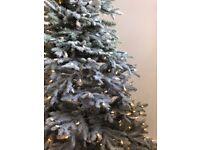 Banham Hill Frosted Fraser Fir Prelit Christmas Tree - 6' Height