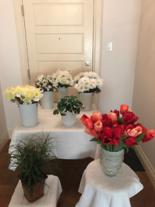 Multiple Artificial Flowers and Plants in Vases