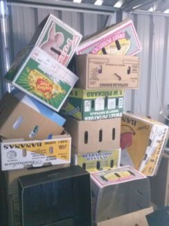 Free boxes  Thornton Maitland Area Preview