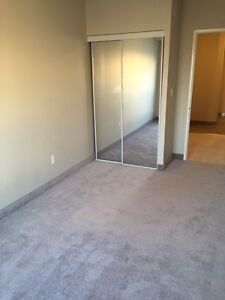 SPACIOUS SUITES IN WATERLOO! READY NOW! Kitchener / Waterloo Kitchener Area image 7