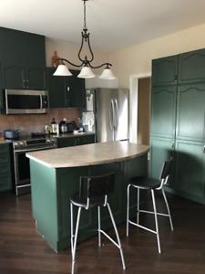 Kitchen Cabinets - Best offer