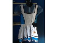 Alice in Wonderland fancy dress outfit