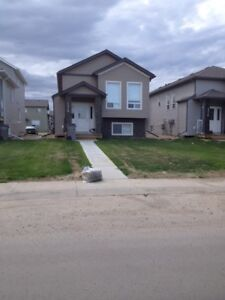 2 Bed 1 Bath Basement Suite in Westpointe Available Now!