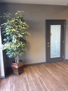 Office Space for Rent on Bancroft Drive