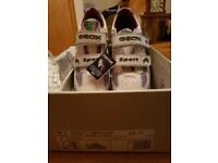 Geox boys trainers BRAND NEW IN BOX