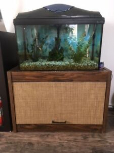 20 Gallon Fishtank with 2 Fish and Stand
