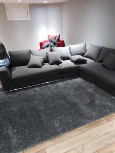 AMAZING Only 4 Months Old Sectional