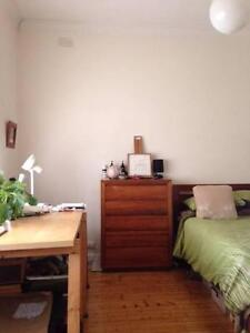 Best Location, Big Room + Beautiful Dog ! Apply if you have a dog Fitzroy North Yarra Area Preview