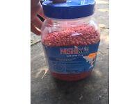 Fish pond Food Nishikoi