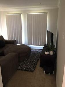 Room for Rent in Gregory Hills $190 week Currans Hill Camden Area Preview