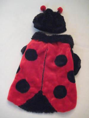 Ladybug Dog Halloween Costume 12