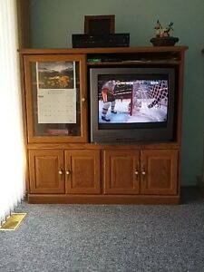 TV Cabinet (or Bookshelf)