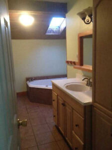 Calderwood Rooms - SLC - with Jacuzzi, Skylights, Parking