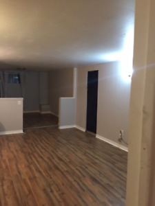 Spacious 2 Bedroom Basement Apartment - July 1st