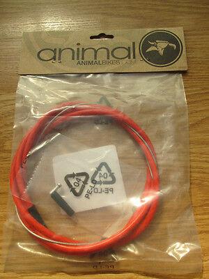BMX MTB ANIMAL BIKES ILLEGAL LINEAR BRAKE CABLE RED BNIP STUNT BRAKE DOWNHILL