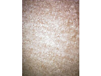 NEW tough carpet 1.90 x 5.40 m in 'salt and pepper' brown £ 55 -NEW still rolled