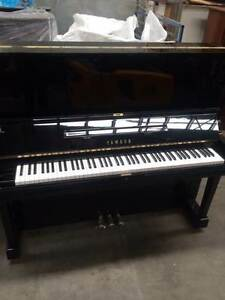 Yamaha U3H price reduced Piano Magic - S/No H1629769 Belmont Belmont Area Preview