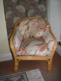 Pair of Cane Conservatory armchairs