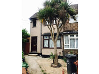 2 Bedroom House, Barking, Excellent Condition, Must Be Seen, DSS Welcome + Gurantor Only, Call Now