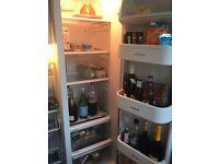 Whirlwind upright fridge freezer.