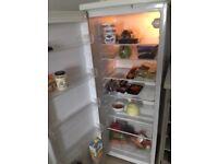 Tall larder fridge for sale