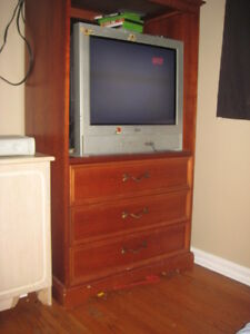 t.v unit great condition delivery available Cambridge Kitchener Area image 1