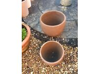 Attractive hardy style concrete planter/plant pot