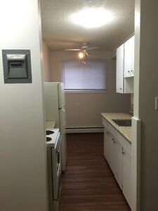 Bachelor suite with Great Incentives! Edmonton Edmonton Area image 4