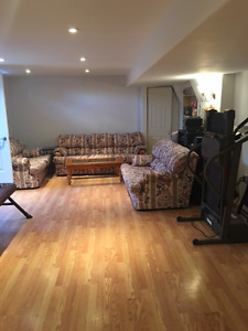 Basement 2 bed apartment in Doon/Wyldewoods