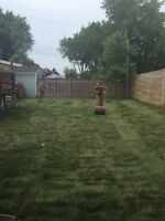 NEW LAWN. Sod replacement. As low as 0.95$/ Sq Foot all in