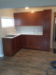 Newly Renovated 1 Bedroom + Den House