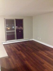 Modern & Newly Renovated 1 Bedroom Suites with Waterfront Views Sarnia Sarnia Area image 10