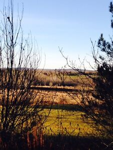 Beautiful Lot overlooking Kennebecasis River Rd