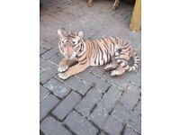 Tiger - Resin, Vivid Arts