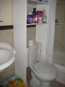 Bathroom organizer mint condition Cambridge Kitchener Area image 2