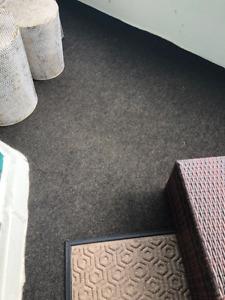 New-Exterior/Outdoor Carpet