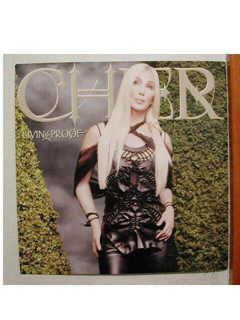 Cher Poster Flat Living Proof