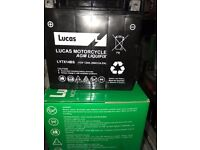 LUCAS AGM Battery LYTX14-BS Maintenance free NEW bought in error YTX14-BS