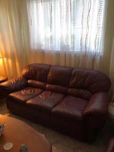 Ensemble de Sofa en cuir véritable rouge vin et meuble Alexander
