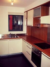 Fantastic 1 bedroom apartment *** SHORT LET ONLY***