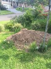 Landscaping soil Winston Hills Parramatta Area Preview