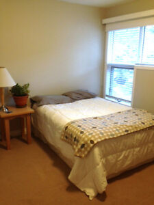 Room for Rent Downtown Canmore