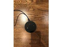 Amazon Echo Dot (1st Generation)