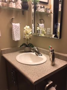 Bathroom Countertop with Sink and Faucet